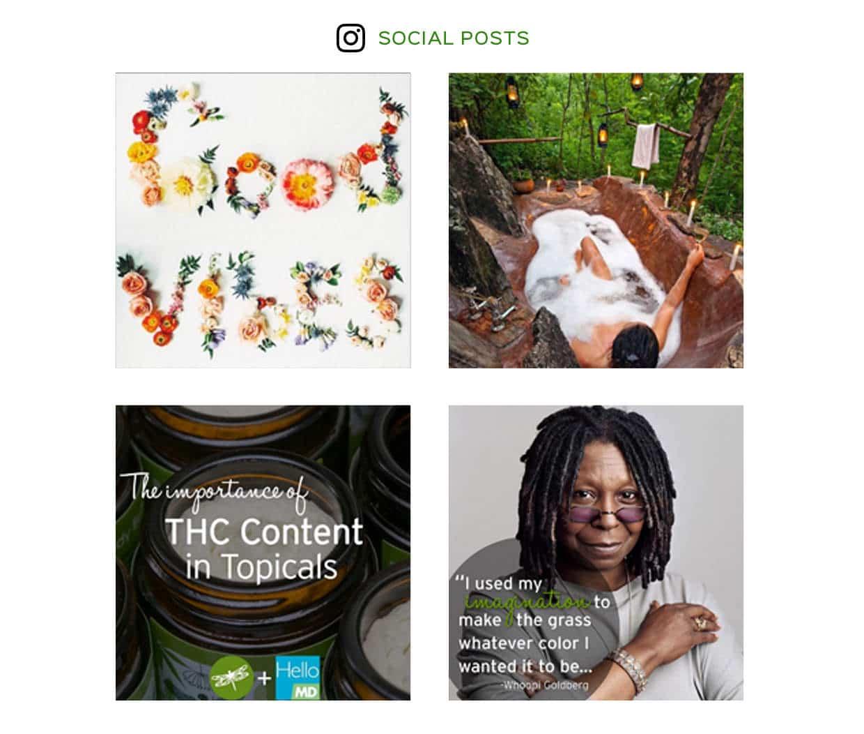 7 Rays Marketing - Sweet ReLeaf social media posts