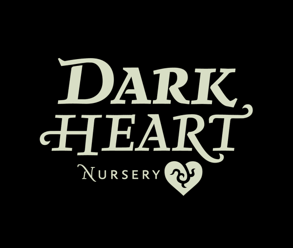 Dark Heart Nursery